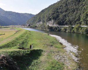高津川川辺