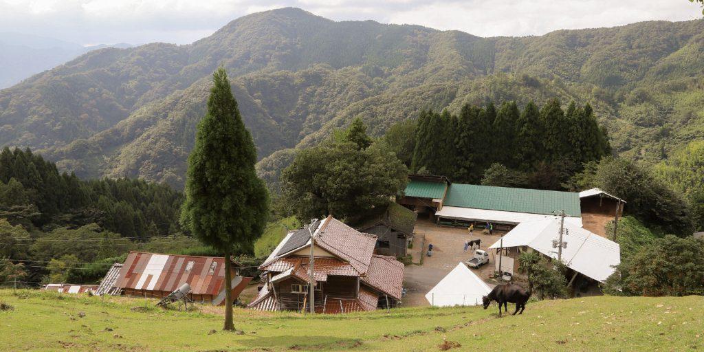 07ロケ地 京村牧場